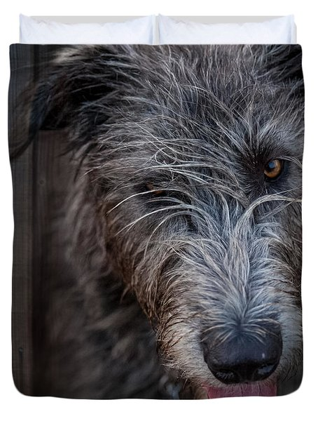 Toby, The Irish Wolfhound Pup Duvet Cover