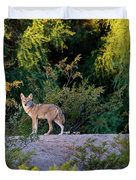 Today's Coyote Duvet Cover