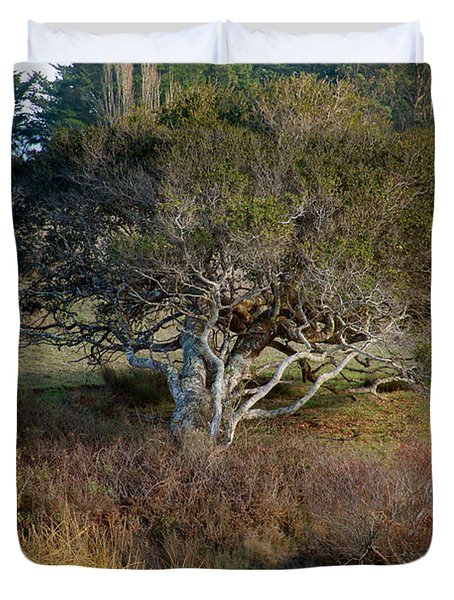 Tomales Bay Marin County California Duvet Cover by Wernher Krutein