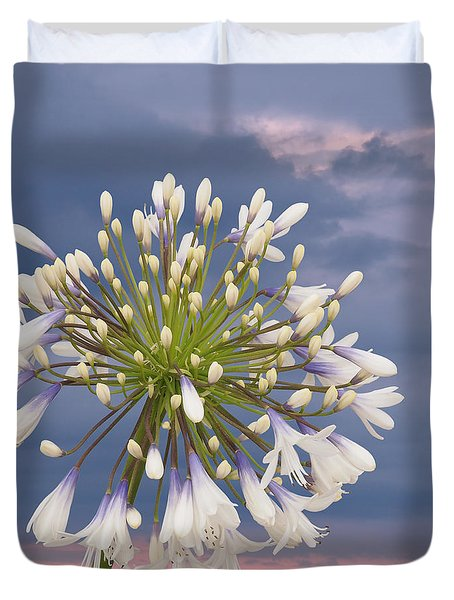 Tomorrow Is Another Day Agapanthus Square Duvet Cover