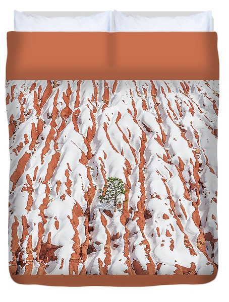 Tonan, The Aztec Goddess Of Winter Solstice  Duvet Cover by Bijan Pirnia