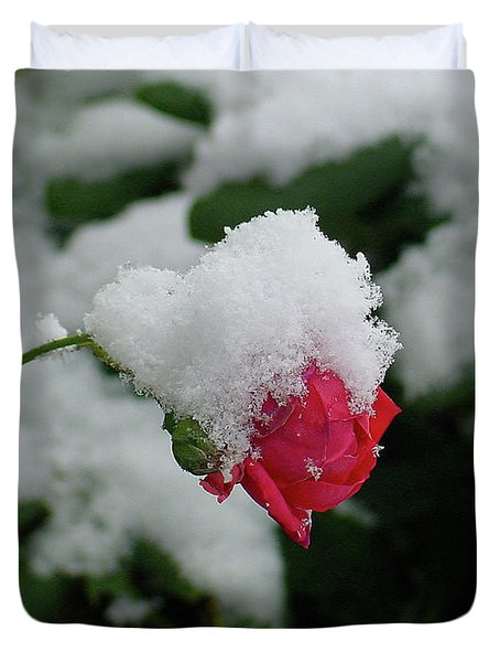 Too Soon Winter - Red Rose  Duvet Cover by Shirley Heyn