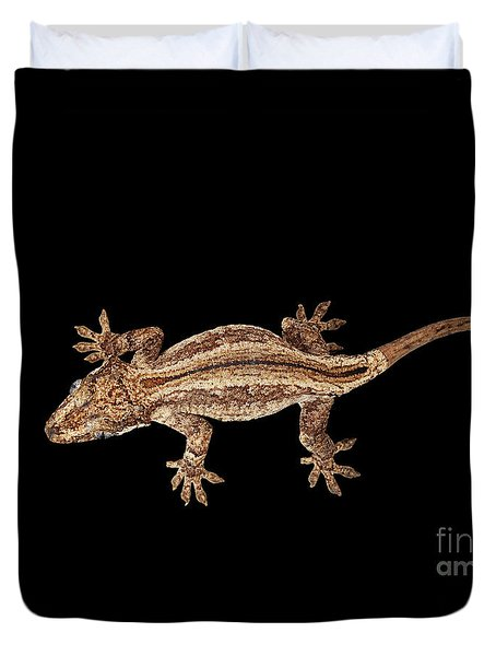 Top View Of Gargoyle Gecko, Rhacodactylus Auriculatus Staring Isolated On Black Background. Native T Duvet Cover by Sergey Taran