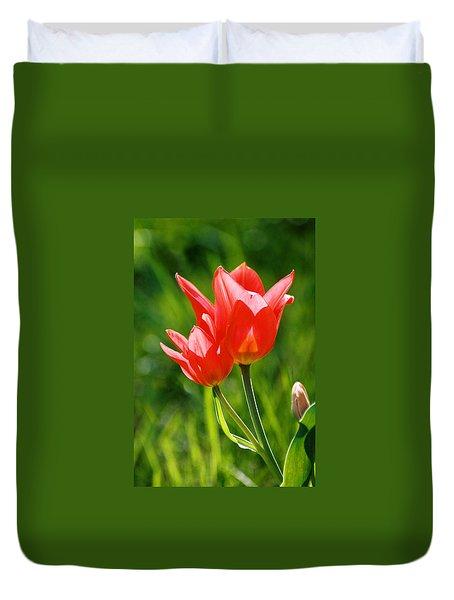 Toronto Tulip Duvet Cover