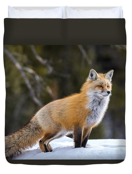 Duvet Cover featuring the photograph Totally Foxy by Yeates Photography
