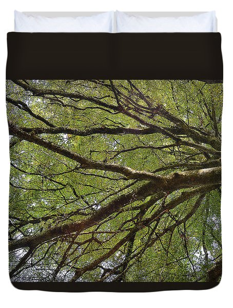 Touch The Sky  Duvet Cover by Felicia Tica