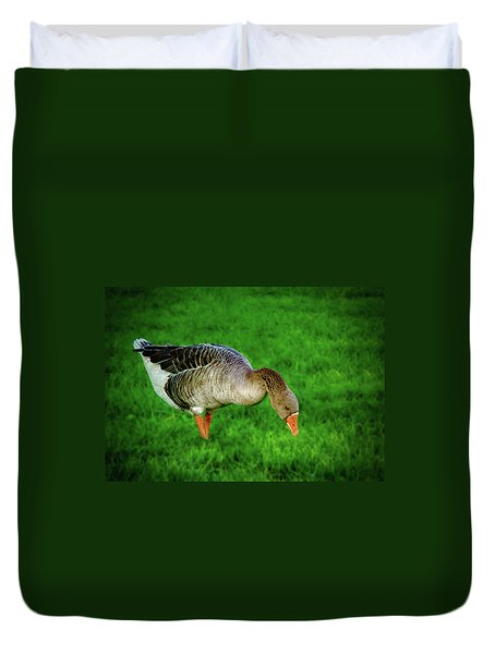 Toulouse Goose  Duvet Cover