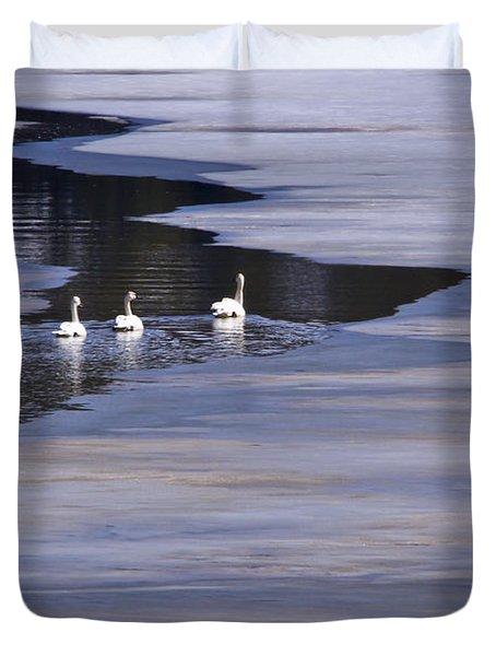 Tourist Swans Duvet Cover by Albert Seger
