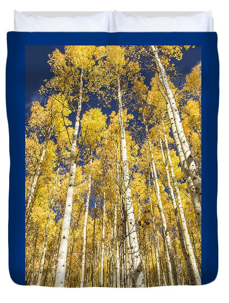 Towering Aspens Duvet Cover by Phyllis Peterson