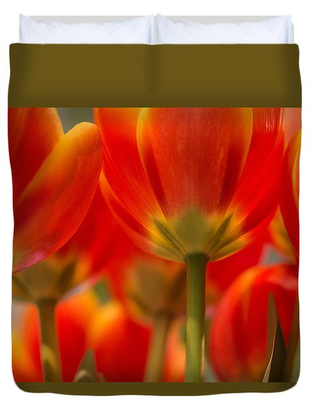 Duvet Cover featuring the photograph Towering Tulips  by Julie Andel