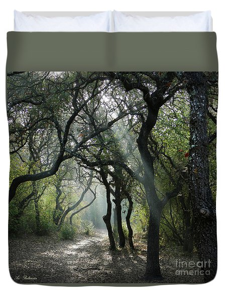 Trail Of Light Duvet Cover