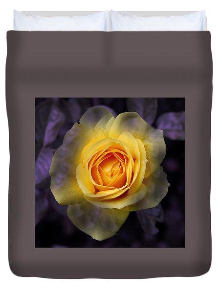 Transitional Rose Duvet Cover