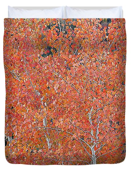 Duvet Cover featuring the digital art Translucent Aspen Orange by Gary Baird