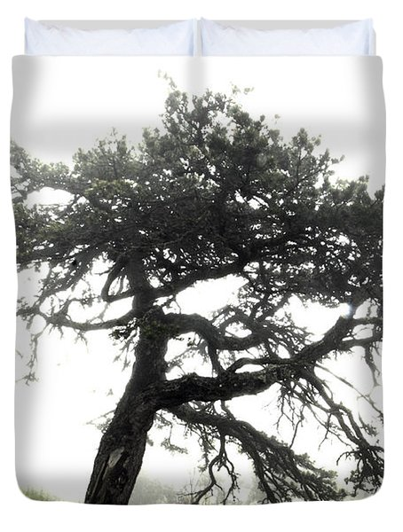 Duvet Cover featuring the photograph Tree by Alex Grichenko