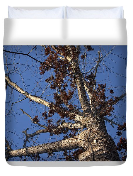Tree And Branch Duvet Cover