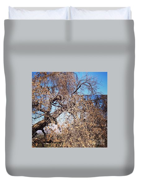 Tree Bow And Dance Duvet Cover