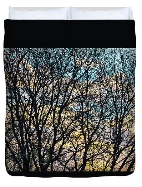 Tree Branches And Colorful Clouds Duvet Cover by James BO Insogna