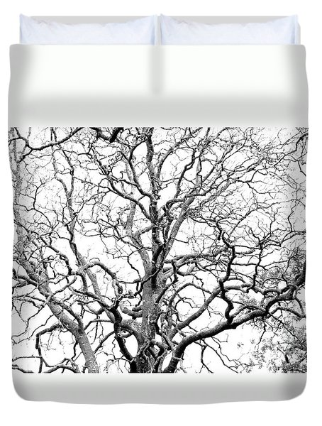 Tree Branches Duvet Cover by Gaspar Avila