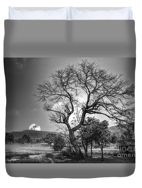 Tree Duvet Cover by Charuhas Images