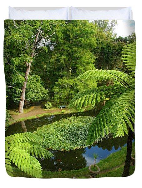 Tree Ferns Duvet Cover by Gaspar Avila