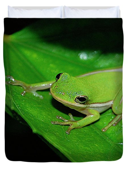 Tree Frog On Hibiscus Leaf Duvet Cover