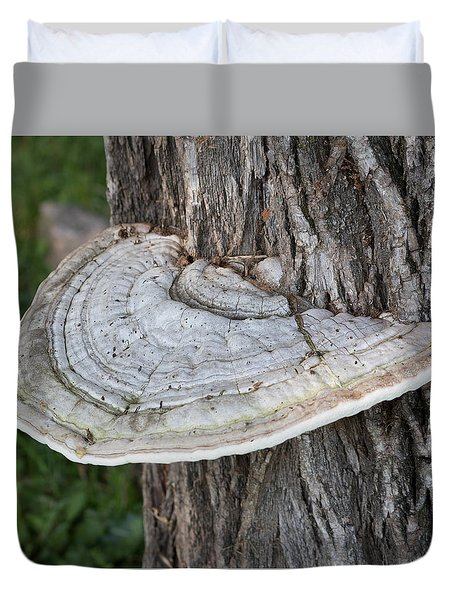 Tree Fungus Duvet Cover