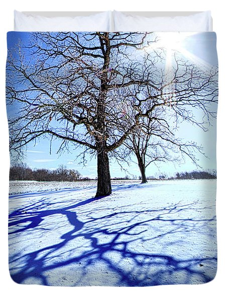 Duvet Cover featuring the photograph Tree Light by Phil Koch