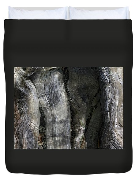 Duvet Cover featuring the photograph Tree Memories # 20 by Ed Hall