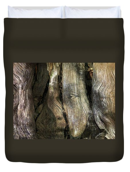Duvet Cover featuring the photograph Tree Memories # 24 by Ed Hall