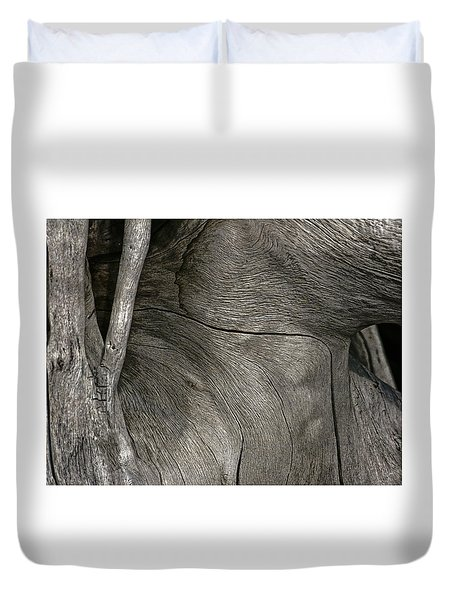 Duvet Cover featuring the photograph Tree Memories # 26 by Ed Hall