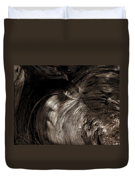 Duvet Cover featuring the photograph Tree Memories # 31 by Ed Hall