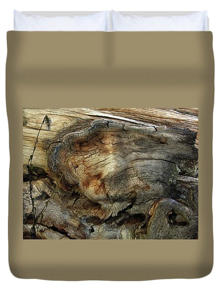 Duvet Cover featuring the photograph Tree Memories # 36 by Ed Hall