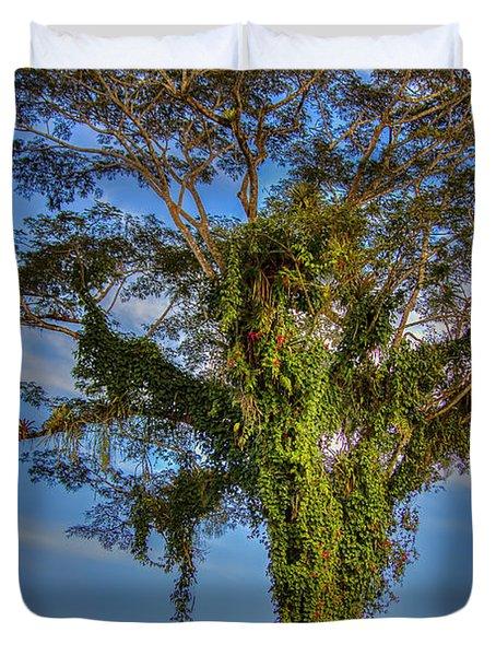 Tree Of Life Duvet Cover by Nadia Sanowar