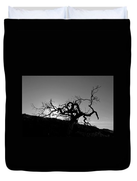 Duvet Cover featuring the photograph Tree Of Light Silhouette Hillside - Black And White  by Matt Harang