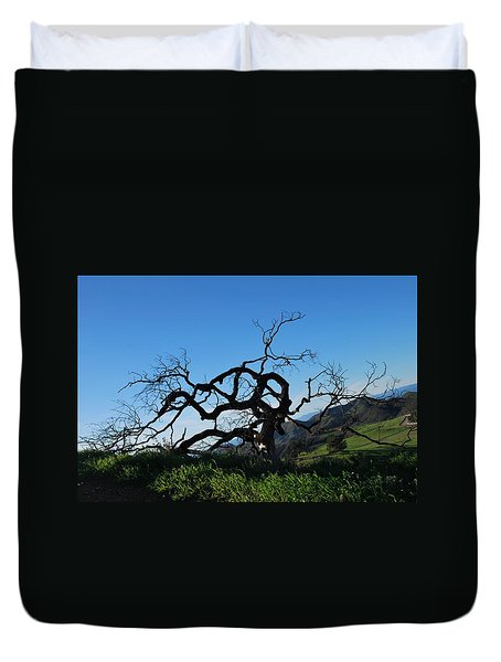 Duvet Cover featuring the photograph Tree Of Light - Slanted Horizon by Matt Harang