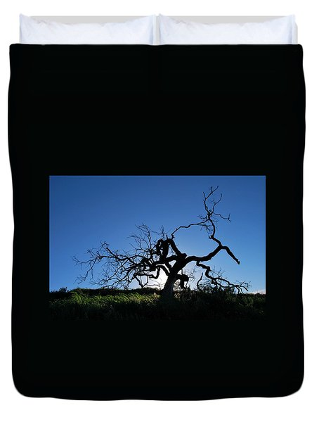 Duvet Cover featuring the photograph Tree Of Light - Straight View 2 by Matt Harang