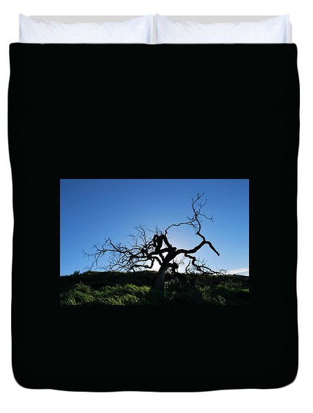 Duvet Cover featuring the photograph Tree Of Light - Straight View by Matt Harang