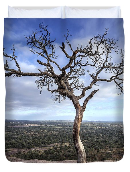 Tree On Enchanted Rock - Square Duvet Cover