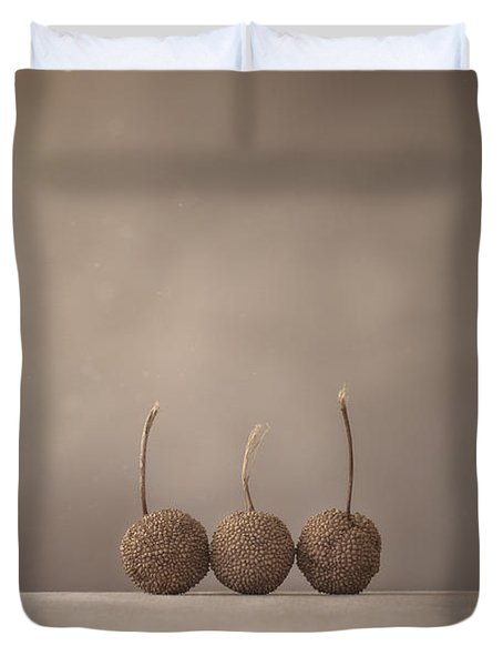 Tree Seed Pods Duvet Cover