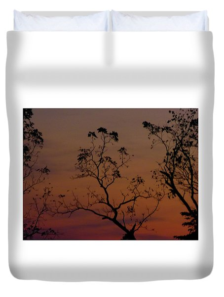 Tree Top After Sunset Duvet Cover by Donald C Morgan