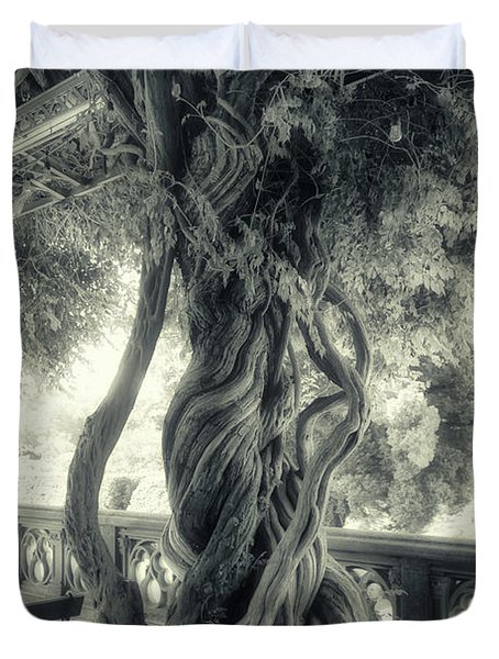 Tree Trunk Bw Series Y6693 Duvet Cover