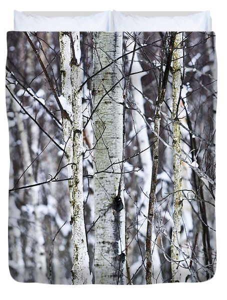 Tree Trunks Covered With Snow In Winter Duvet Cover by Elena Elisseeva
