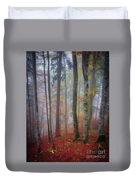 Duvet Cover featuring the photograph Tree Trunks In Fog by Elena Elisseeva