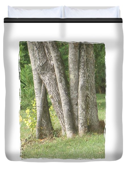 Tree Trunks Duvet Cover