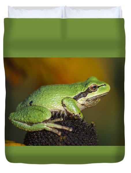 Treefrog On Rudbeckia Duvet Cover