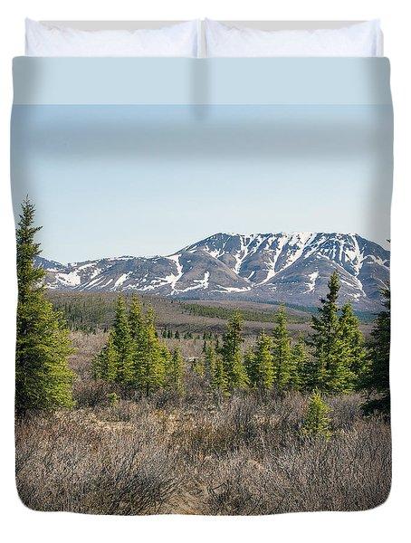 Treeline In Denali Tundra Wilderness Duvet Cover by Allan Levin