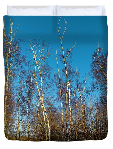 Trees And Blue Sky Duvet Cover