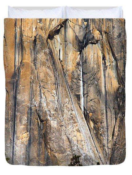 Trees And Granite Duvet Cover
