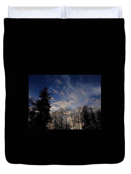 Trees And Sky Duvet Cover by John Rossman