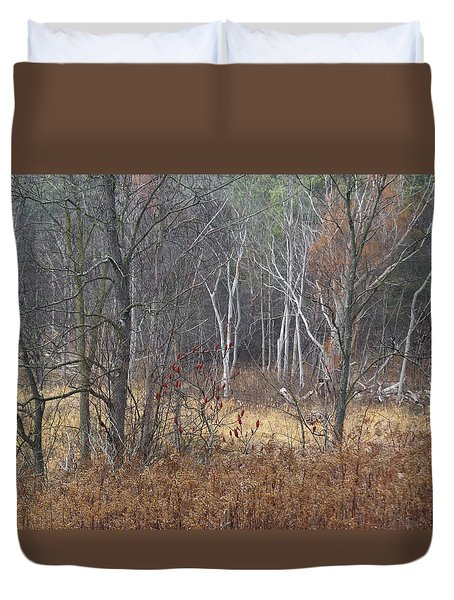 Trees In Heritage Park On A Foggy Day Duvet Cover by Sandra Church